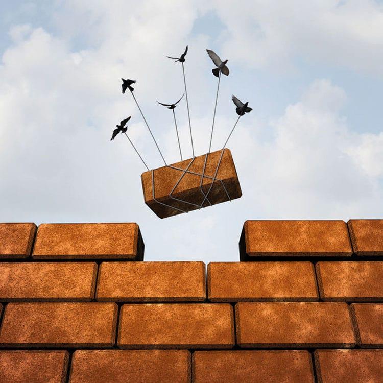 Mehrere Vögel tragen zusammen den Stein aus einer Mauer